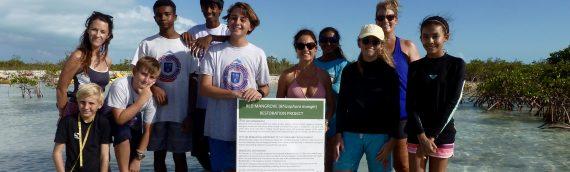 RATs – Week 4 – Mangrove Mania !