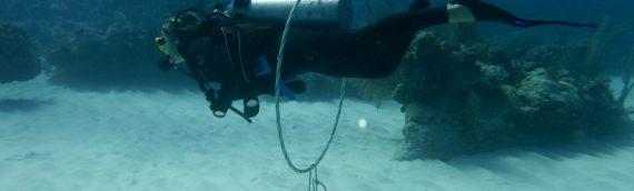 RATS – Week 7 – Buoyancy Dive